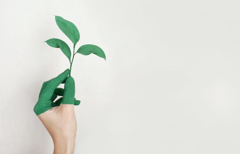 eco-friendly-hand